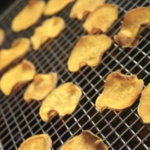 mandolin veggie chip square